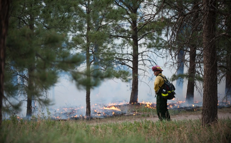 Image: Black Forest Fire
