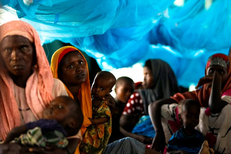 Image: Dadaab Refugee Camp: 20 Years On