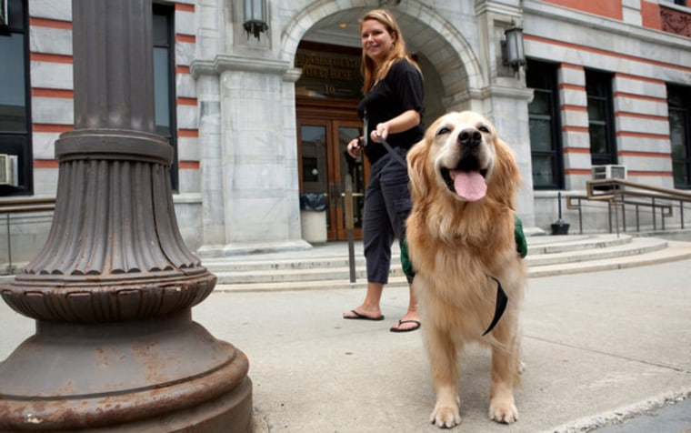 Rosie, a dog that accompanies children as they testify in court, with Lori Stella, a social worker, outside the Dutchess County Courthouse in Poughkeepsie, N.Y.