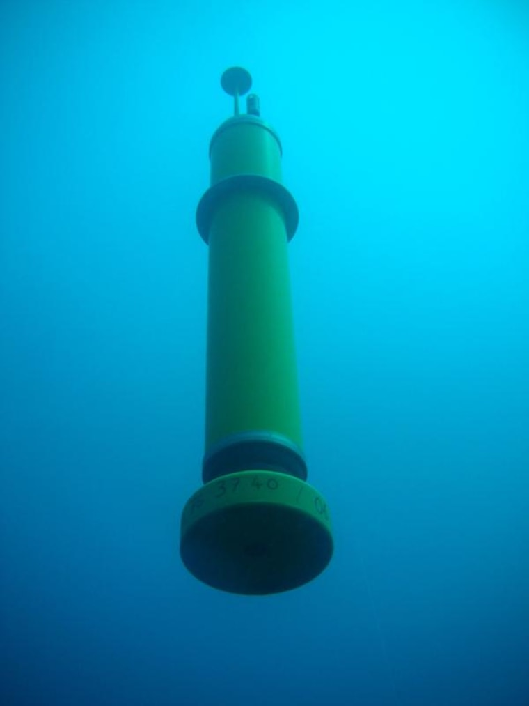 Robots named MERMAIDs (Mobile Earthquake Recorder in Marine Areas by Independent Divers) now floating in the oceans are helping image the interior of the Earth.