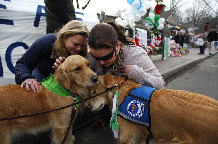 Image: Comfort dogs receive attention from two women near a memorial for the Sandy Hook Elementary School shooting victims in Newtown