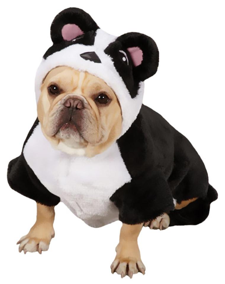 Elvis Presley Dog Costume