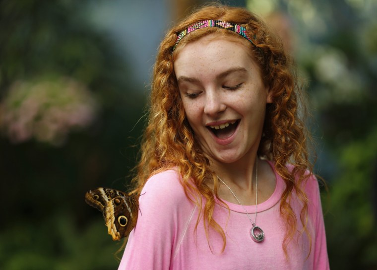 Image: Butterflies from around the world fill the bird aviary for the next month at the San Diego Zoo Safari Park in San Diego, CA