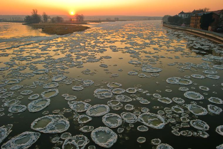 Image: Pancake ice