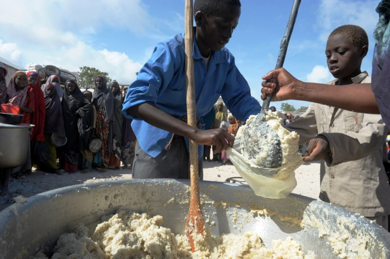 Image: A Somali boy receives a ration of cornmeal in Mogadishu