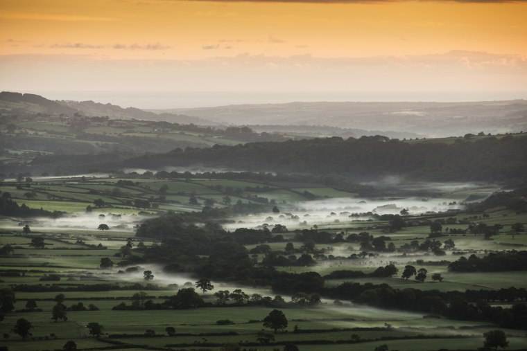 Image: Autumn Colours In The North Yorkshire Moors
