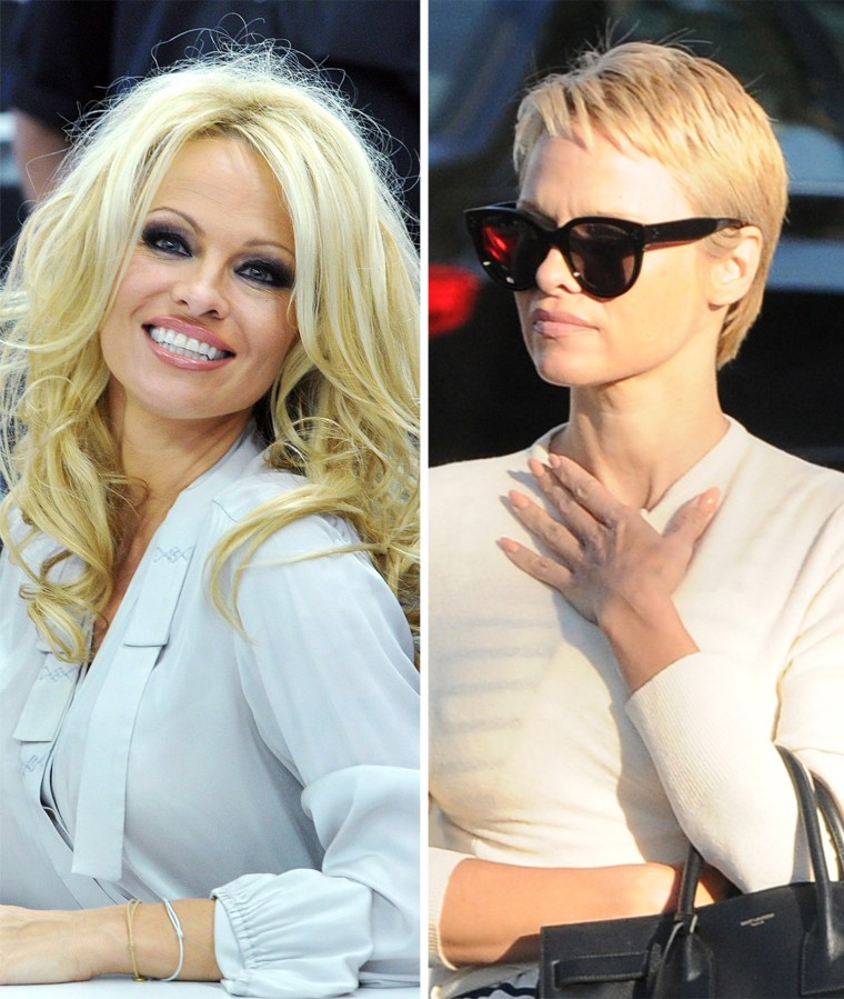Extreme Lengths Dramatic Celebrity Haircuts