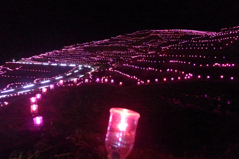The record for the largest display of solar-powered LEDs consists of 20,461 lights achieved by Wajima City (Japan) at Shiroyone Senmaida in Wajima, Ishikawa, Japan. The record was certified on 14 November as part of the celebrations for Guinness World Records Day 2012. Shiroyone Senmaida are terraced rice fields in Wajima City. Over 220 volunteers including local Boy Scouts, high school students and joint rice field owners of Shiroyone Senmaida, as well as people from outside the prefecture, planted the solar-powered LEDs in the rice fields. All the LEDs used for the display were 100% solar-powered.