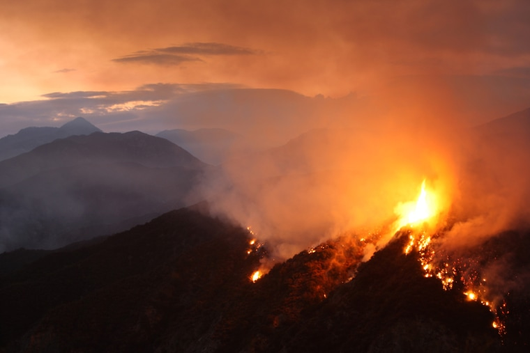 Image: Williams Fire Burns In The Angeles National Forest