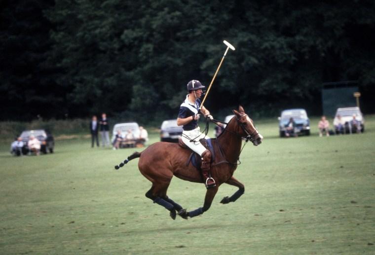 Image: Polo Prince