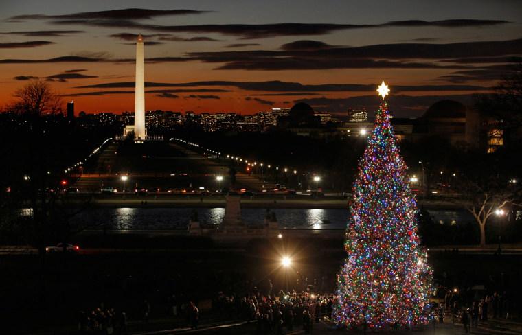 image capitol christmas tree washington dc
