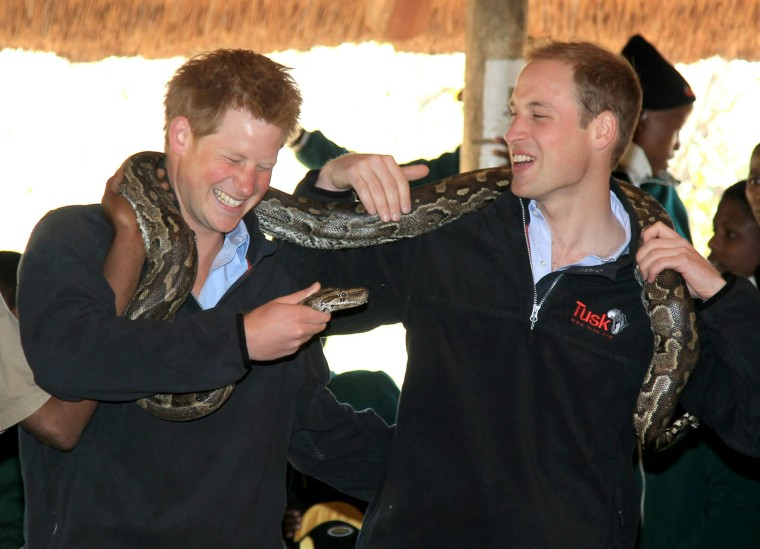 Image: Prince William And Harry Visit Botswana - Day 2