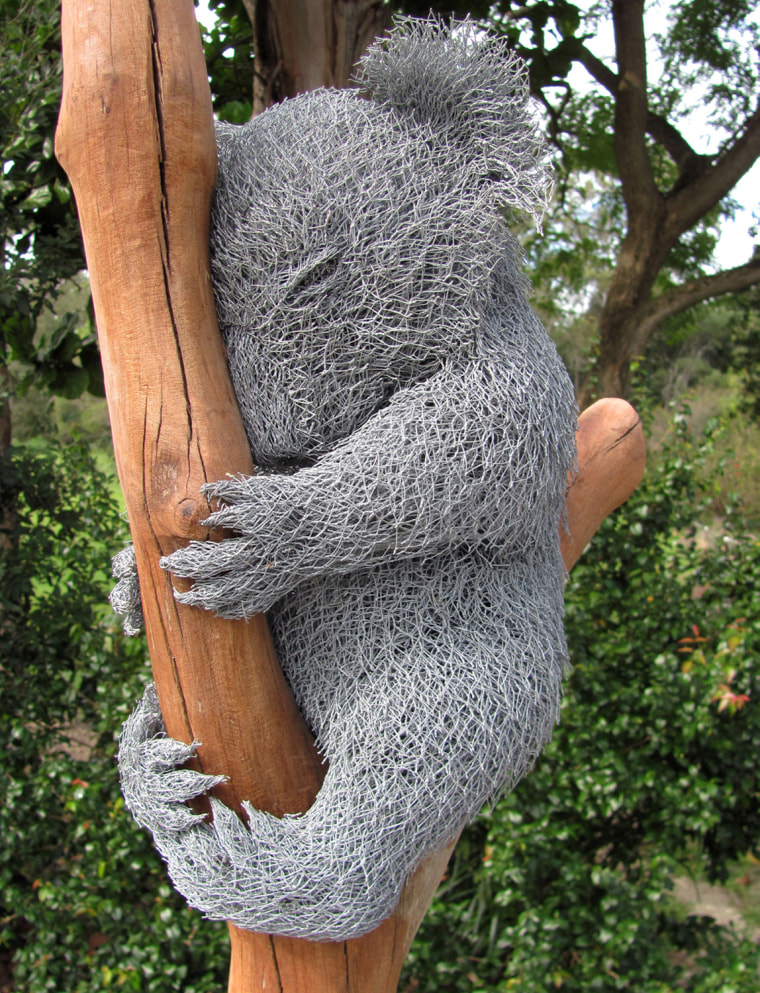 A meshy, metallic marsupial Here, Lovatt creates a cuddly koala bear, clinging tenaciously to a tree.    An artist has recreated the iconic faces of music legends the Beatles, Michael Jackson and Jimi Hendrix using nothing but chicken wire. The incredibly lifelike pieces are made of just under 100 feet of the unusual material and take Ivan Lovatt more than a month to painstakingly twist and pin into shape. To date, the 46-year-old has built up quite a collection of famous faces - from musicians to entertainers and explorers. One sculpture, of musician Bob Dylan, is modelled in such exquisite detail you can almost see every hair on his head. Another is the spitting image of Dame Edna Everage and shows the larger-than-life entertainer in her trademark whacky glasses. Even genius Albert Einstein and American president Abraham Lincoln are part of the extraordinary collection.  Pictured: A Koala Bear clings to a tree   Pic:  Ivan Lovatt/Solent News  ©  Ivan Lovatt/Solent News
