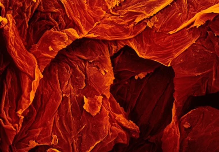 sun-dried tomato 3