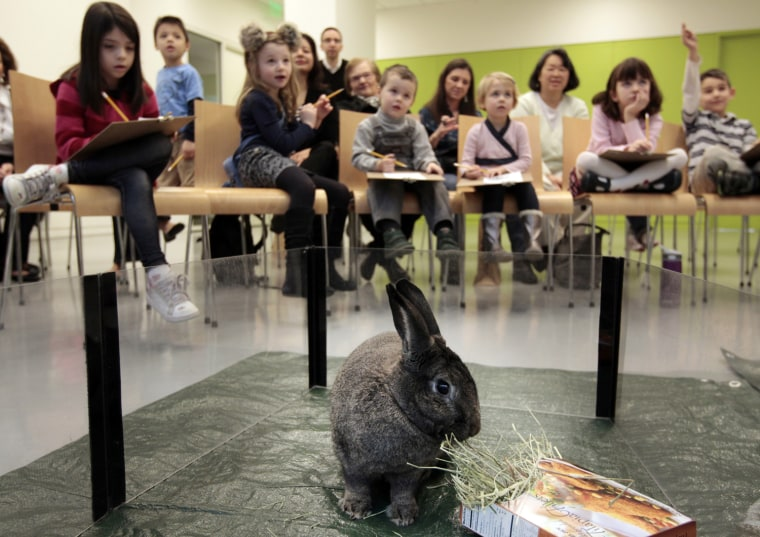 Image: Children sketch a live rabbit from Drumlin Farms Wildlife Sanctuary as part of The Cogan Family Foundation Vacation Week Adventures at the Museum of Fine Arts, Boston during school vacation week in Boston