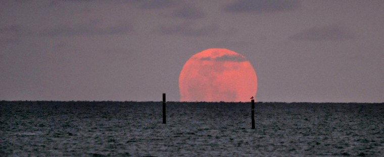 Image: Perigee Moon rises over the Mississippi Sound