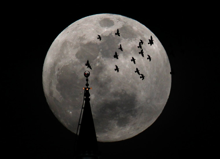 Image: The full moon rises behind a mosque as birds fly in Amman