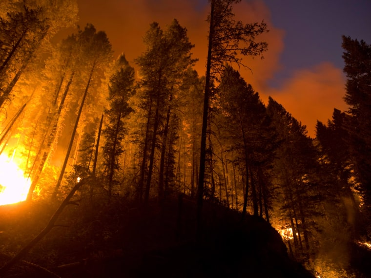 Image: Flames from the Trinity Ridge Fire in the Boise National Forest engulf trees near Pine and Featherville, Idaho