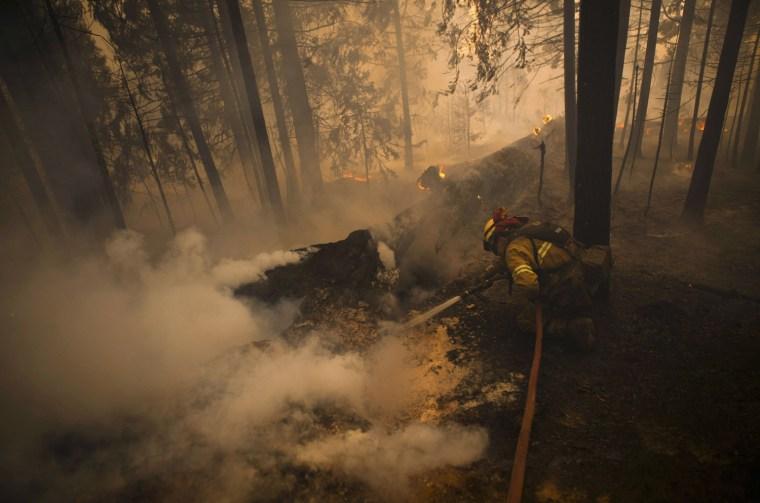 Image: A firefighter battles the Chips fire near Greenville, California