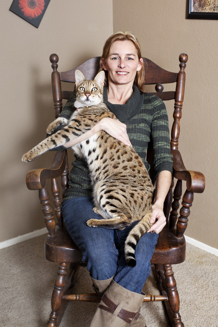 Trouble - Tallest Cat Guinness World Records 2012 Photo Credit: James Ellerker/Guinness World Records
