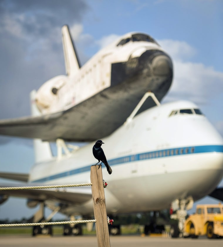 Image: Space Shuttle Endeavour enroute to the California Science Center