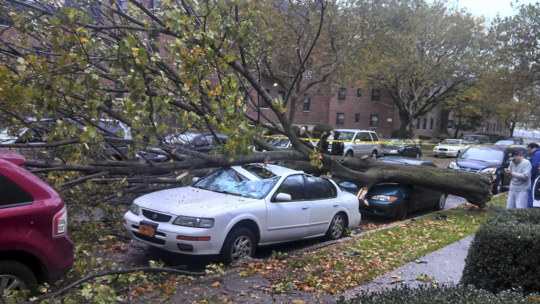 Image: Damaged cars sit under a fallen tree from high winds in the Queens borough of New York