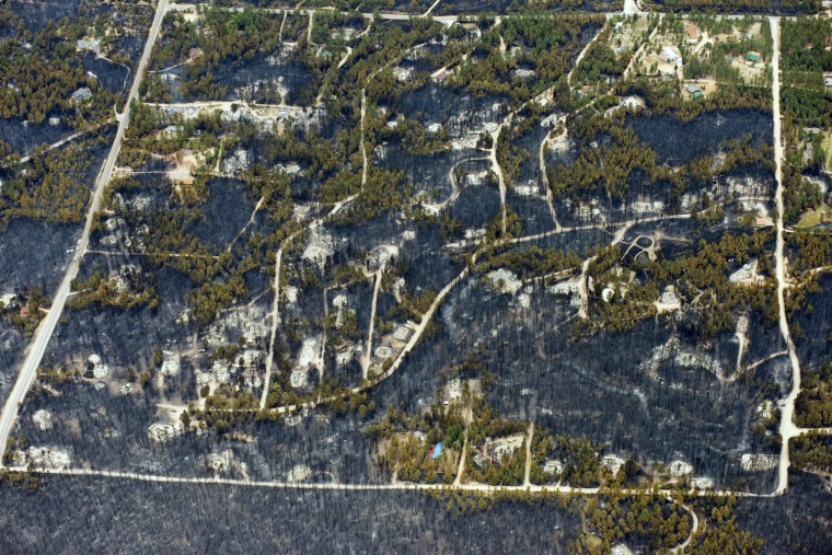Image: Burnt trees and destroyed homes are left in the wake of a wildfire in the densely wooded Black Forest area northeast of Colorado Springs