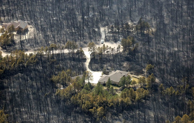 Image: A house sits undamaged in the aftermath of the Black Forest Fire in Black Forest, Colorado