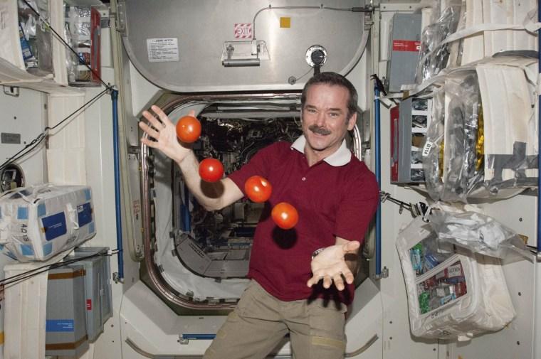 Image: NASA handout photo of Canadian Space Agency astronaut Chris Hadfield
