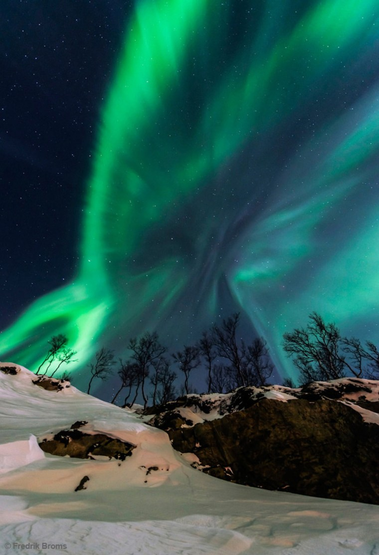 """Solar Storm"" shows an aurora borealis near Tromso, northern Norway, by Fredrik Broms (www.northernlightsphotography.no). This image was the 4th winner in the Beauty of the Night Sky category."