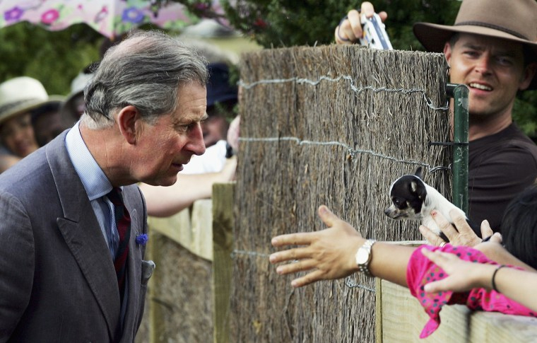 Prince Charles Opens Potters Childrens Garden In Auckland