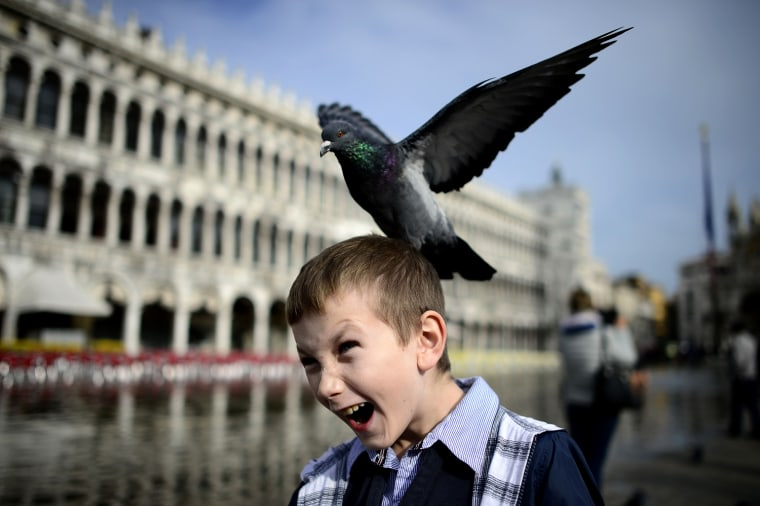 Image: ITALY-VENICE-GONDOLA-FEATURE
