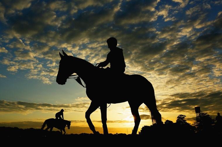 Image: BESTPIX Belmont Stakes 2014 - Previews