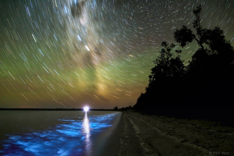 Image: Southern stars trail in a long exposure image over the Gippsland Lakes in Victoria, Australia