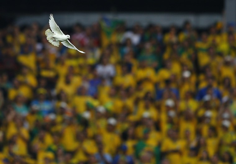 Image: A dove flies after being released before the start of the 2014 World Cup opening match between Brazil and Croatia at the Corinthians arena in Sao Paul