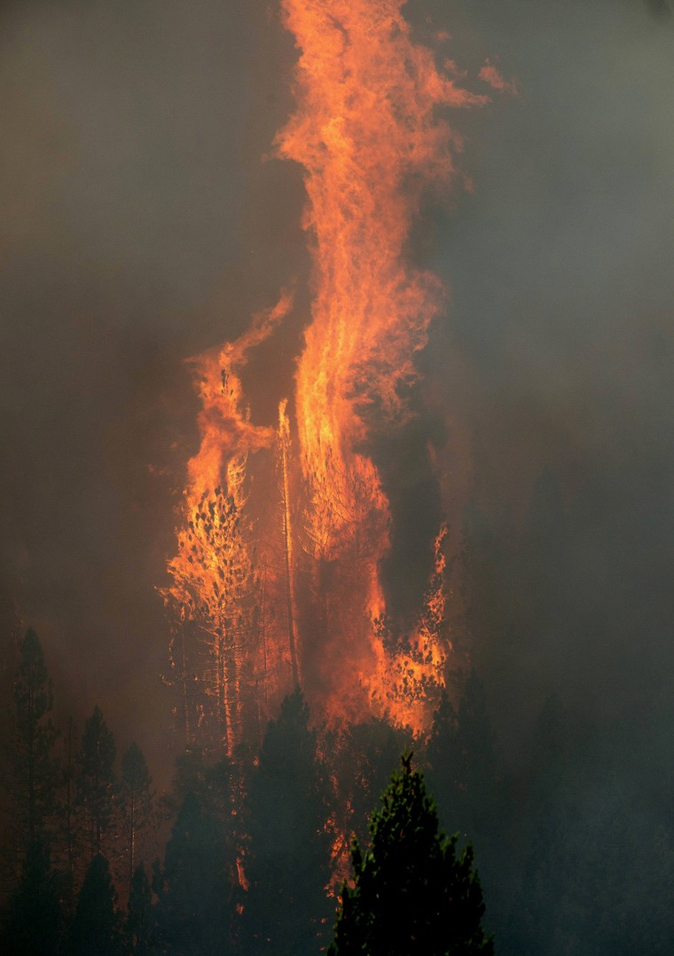 Image: Flames from the King Fire burn on trees near Fresh Pond, California