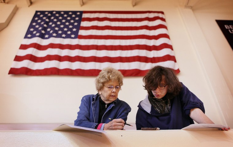 Image: Voting in US Midterm Elections