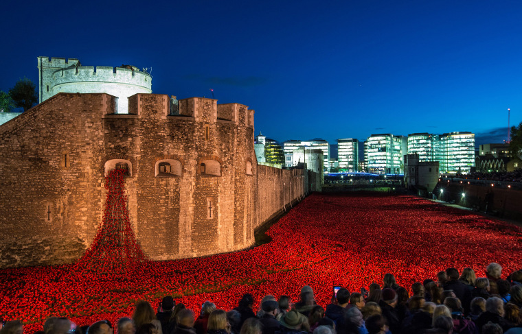 Image: Blood Swept Lands And Seas of Red Installation