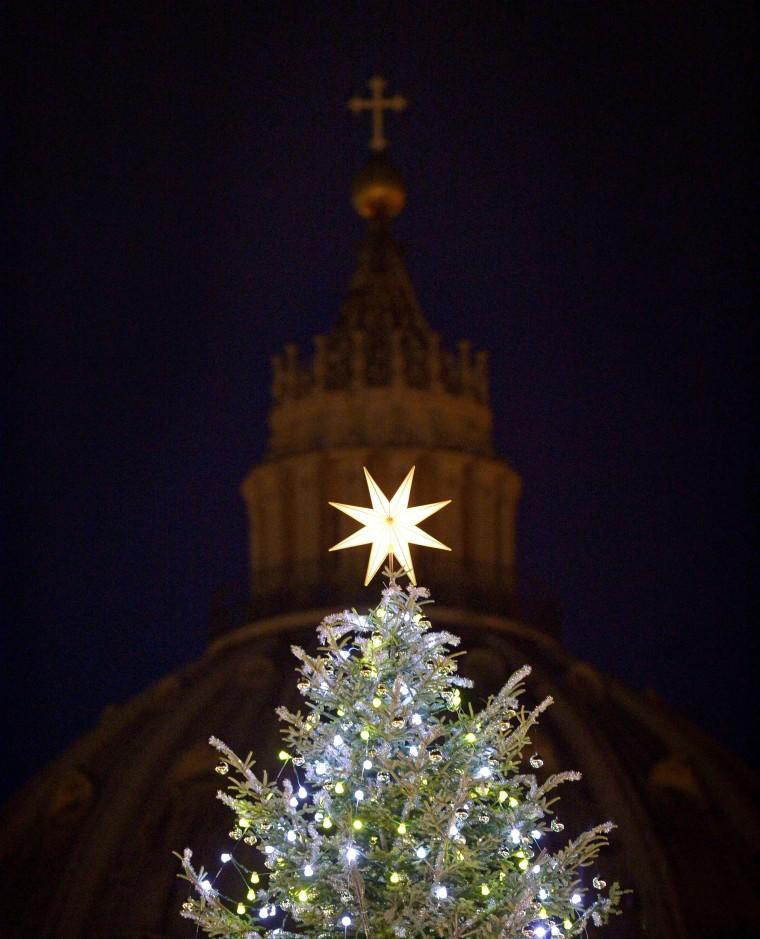 Image: VATICAN-CHRISTMAS-TREE