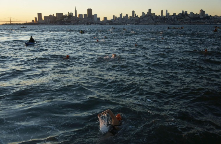 Image: Swimmers swim in San Francisco Bay toward the Aquatic Park during the annual New Year's Day swim in San Francisco, California