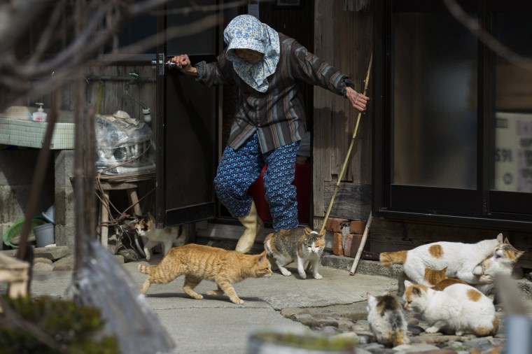 Image: A local woman shoos away cats as she leaves her house on Aoshima Island in Ehime prefecture in southern Japan