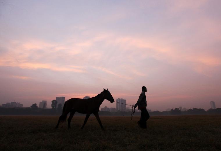 Image: A man walks with his horse at sunrise in Kolkata