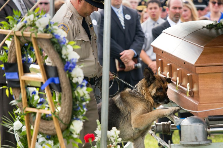 Image: Fallen Bardstown police officer Jason Ellis' partner Figo, center, pays his last respects,