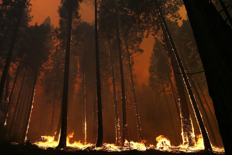 Image: Rim Fire Burns Near Yosemite National Park