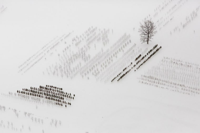 Image: A snow-covered field is seen near Buffalo, New York