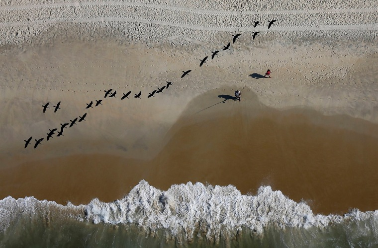 Image: A fisherman casts his line as birds fly over the Sao Conrado beach in Rio de Janeiro