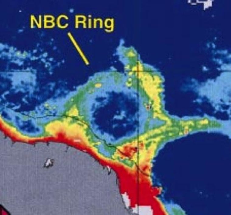 A North Brazil Current ring.