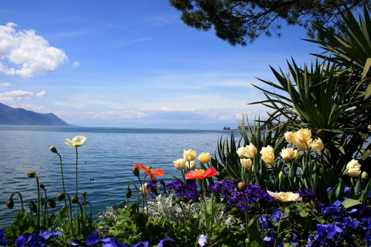 At the lake in Montreux, Switzerland
