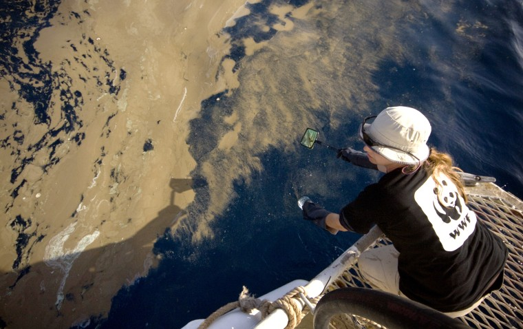 Gilly Llewellyn, the World Wildlife Fund's conservation director in Australia,on Sept. 30 collects samples from a waxy substance found in the water around the Montara oil rig leak in the Timor Sea.