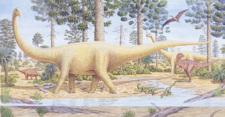 Anartist's impression of a sauropod.